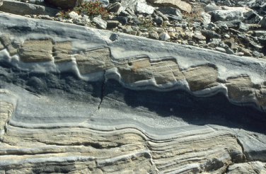 Structural Geology and Tectonics